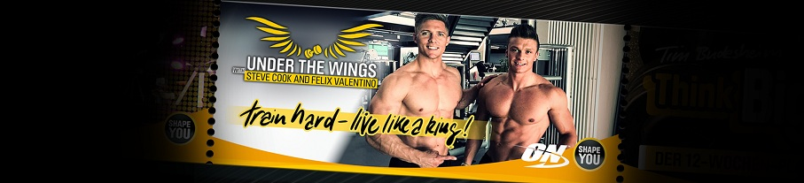 Steve Cook's and Felix Valentino's Under The Wings Workout Series